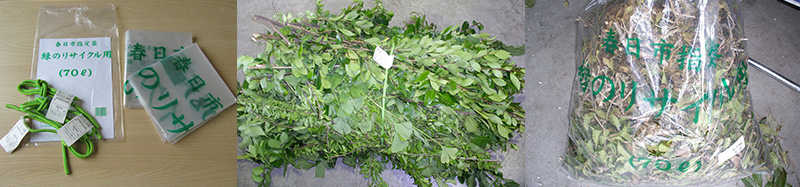 green_recycling_img_2